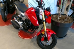 Honda-MSX-125-Roja-01