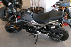 Honda-MSX-05